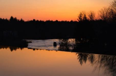 Deep hues of an orange sunset are cut off by the silhouette of trees and a section of rough water. These give way to the smooth reflection of tree tops and sky in the foreground.